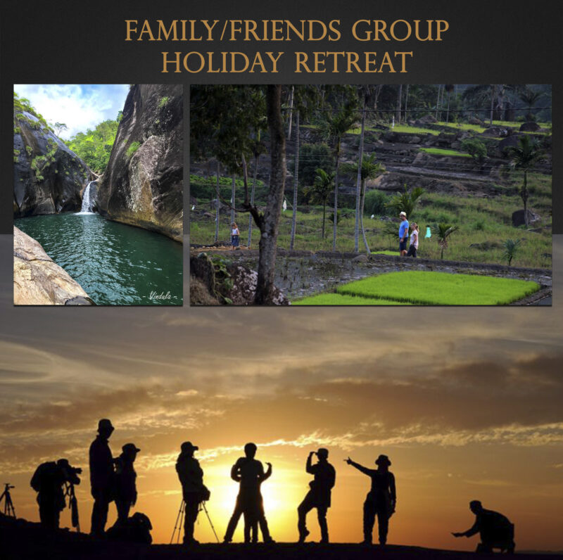Family/friends